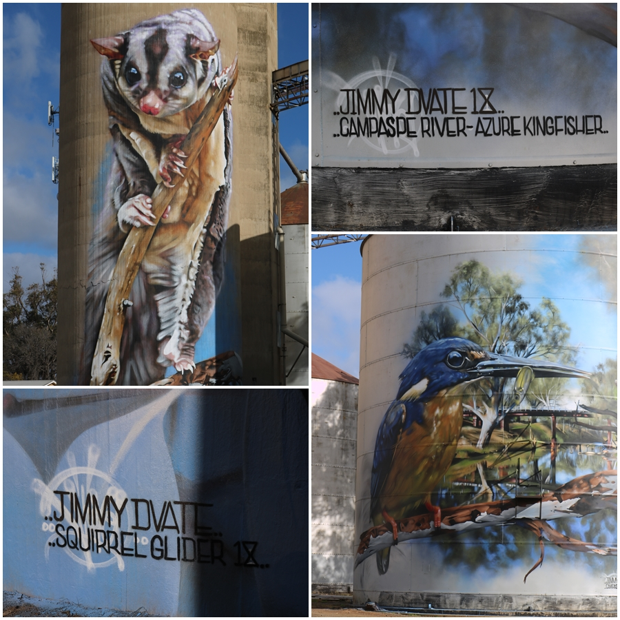 Artist Jimmy Dvate has done a great job portraying a Squirrel Glider and Azure Kingfisher on the Campaspe River for the Rochester Silo Art